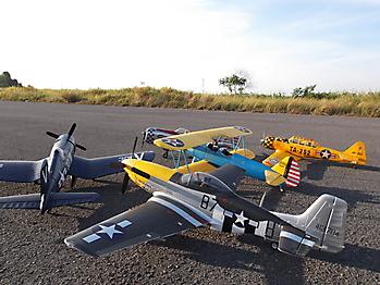 DURAFLY P-51D Mustang 'Ferocious Frankie' - 1100mm