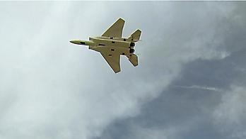 TIAN SHENG MODEL F-15 Eagle 70mm EDF jet - 740mm